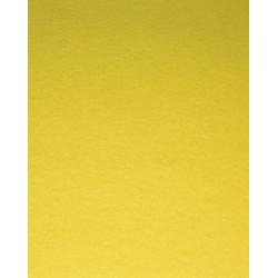 Feltro colore giallo 2 mm...