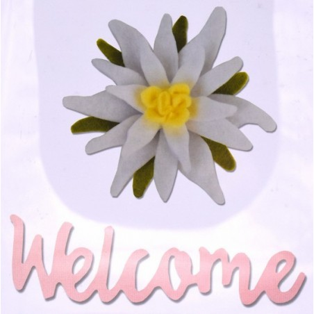 Fustella bigz L sizzix stella alpina e scritta welcome